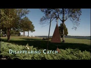 TERRA 519: Disappearing Catch