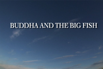 TERRA 411: Buddha and the Big Fish