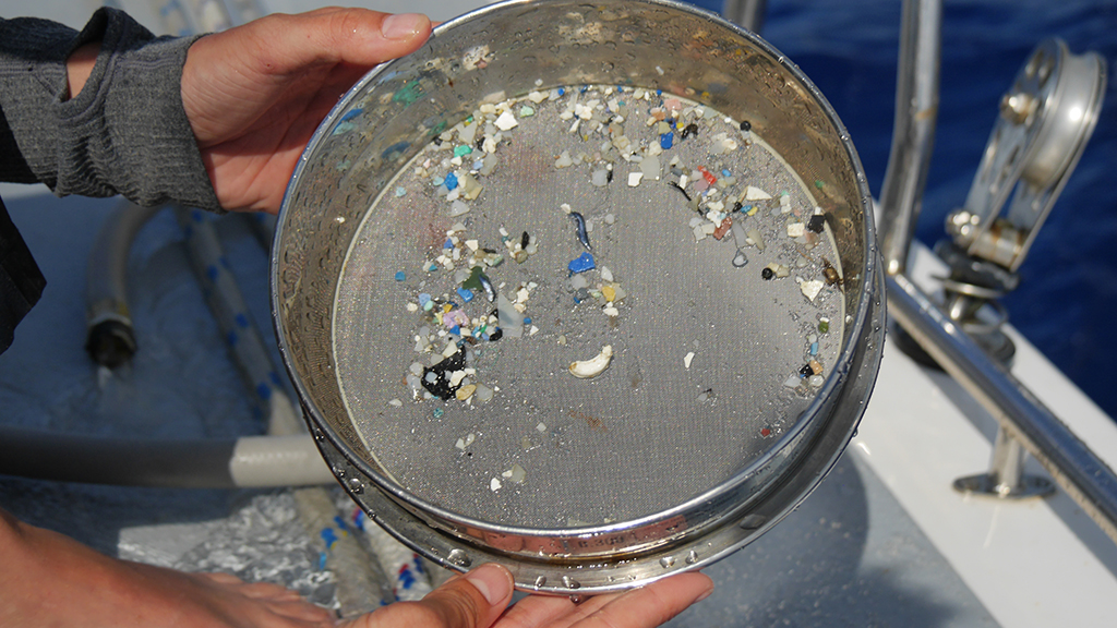 TERRA:  What inspired you to make a film about the micro plastics?