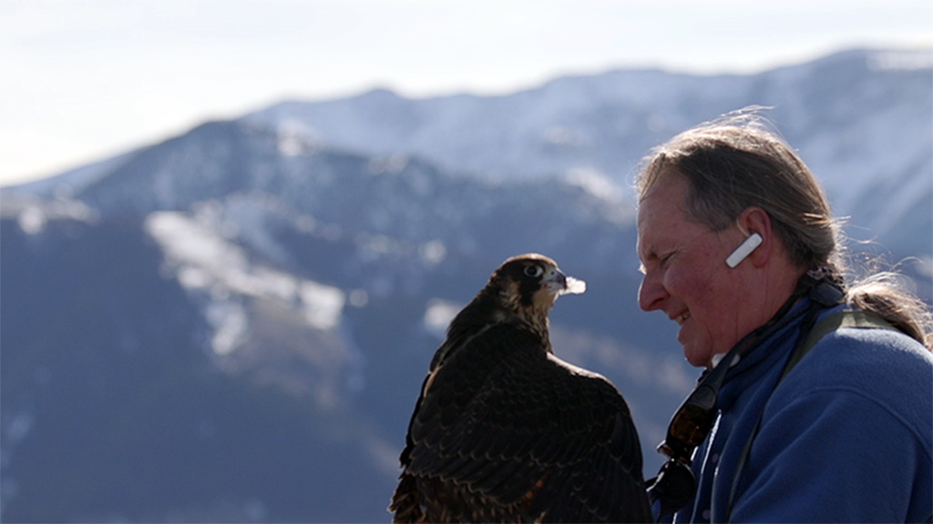 TERRA: What inspired you to make a film about falconry?